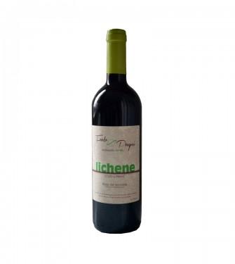 Lichene Rosso Veronese igt 2013  Fondo Prognoi