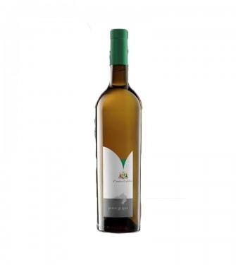 Pinot Grigio 2013 - Cantina Toblino